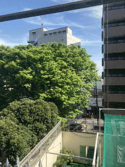 シャトレーイン東京・笹塚_2