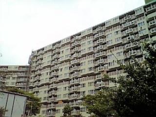 近鉄南港ガーデンハイツ21号棟_3